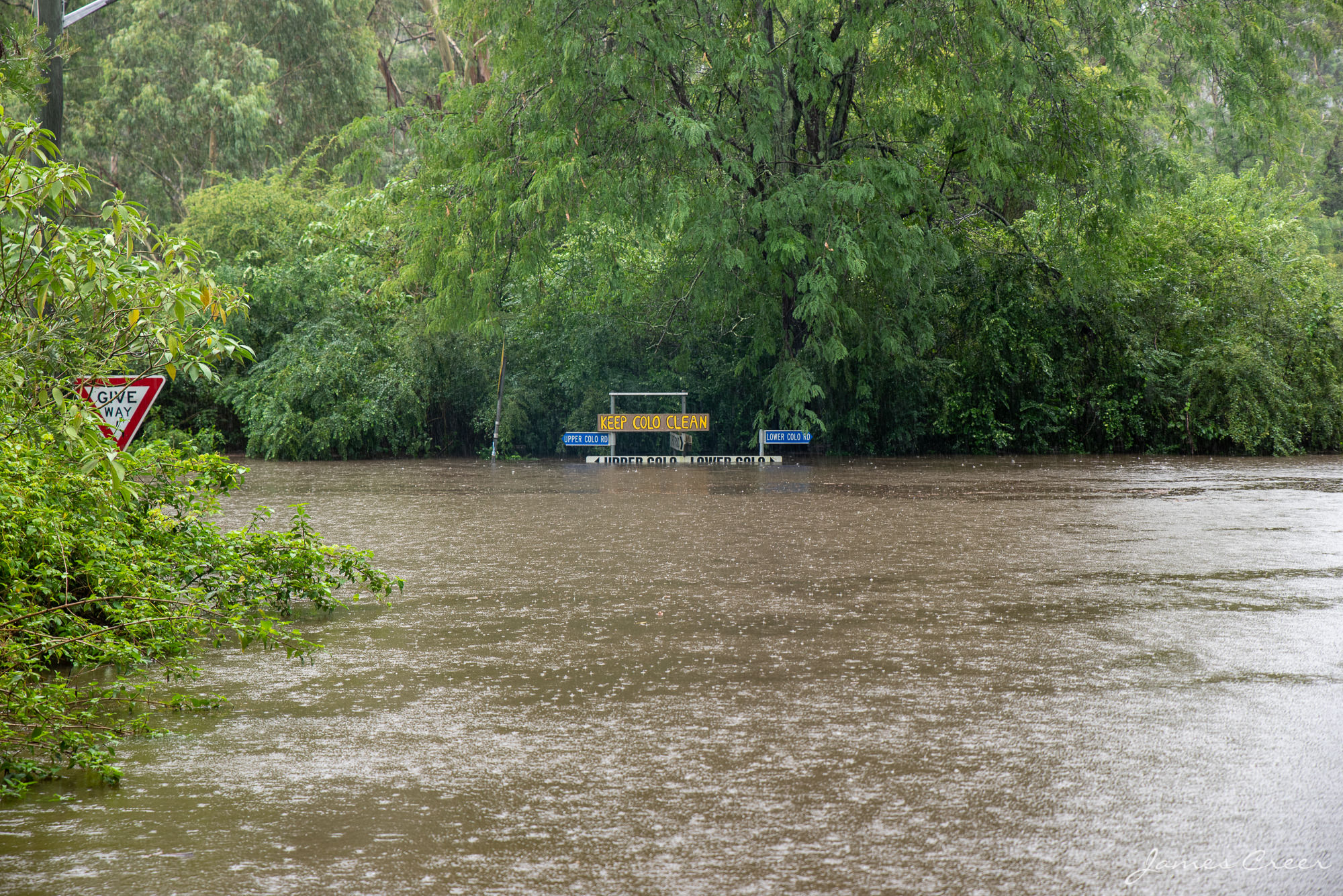 Colo River in flood